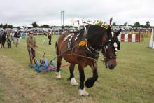 Stithians Show Cornwall