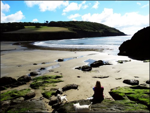 Porthluney Cove Beach BazzaDaRambler
