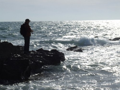 North Cornwall Fishing Guide - Rock Fishing