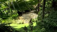 Lost Gardens Heligan Video